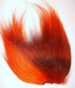 Fl. ohňově oranžový